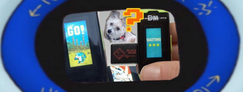 Black Roar DiM - Digimon Vital Bracelet Vlog #2